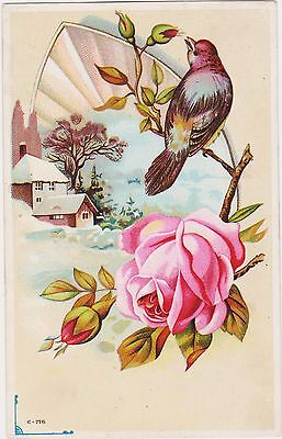 RARE 1800s M OLSON STOVES RED BIRD & ROSE VICTORIAN TRADE CARD  ROCK ISLAND IL