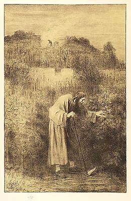 WILHELM STEINHAUSEN - KLOSTERGÄRTNER - Tonlithografie 1890