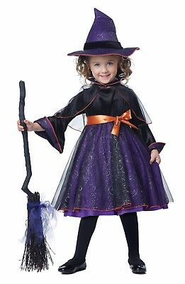 Harry Potter Hocus Pocus Wicked Witch Wizard Toddler Costume - Toddler Witch Costume