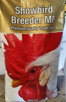 Poultry Showbird Breeder MP Para Hills West Salisbury Area Preview