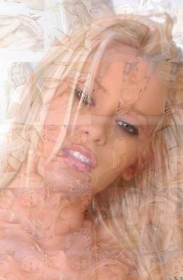 Nude Mosaic (JENNA JAMESON cm. 31x41 poster - JENNA photo mosaics with naked nude pics )