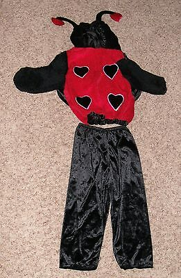 Celebration Halloween Red and Black Lady Bug 2pc Costume for Toddler - Halloween Costumes For Toddlers