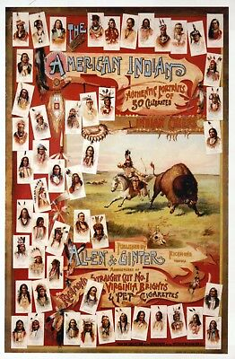 The American Indian, 50 Chiefs, Native American, Buffalo Bison - Modern Postcard