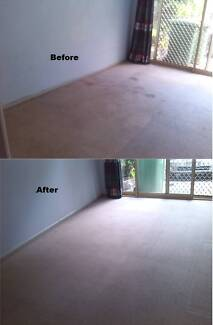 Carpet clean 1 bedroom $45, 2 room $50, 3 room $65, 4 room Surfers Paradise Gold Coast City Preview