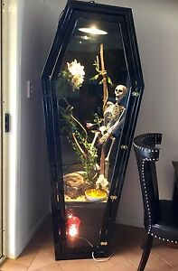 STUNNING CUSTOM MADE COFFIN REPTILE TANK DISPLAY CABINET Coolangatta Gold Coast South Preview