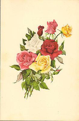 p & o - s.s. carthage  menu (  1955 ) dinner (  the rose )