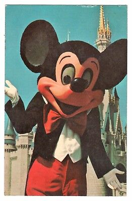 Welcome To Fantasyland Walt Disney World Florida Vintage Postcard Oct17