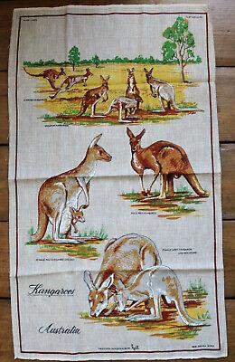 VINTAGE LINEN TEA TOWEL / AUSTRALIAN KANGAROOS / AUSTRALIA JOEY FEMALE RED / 13