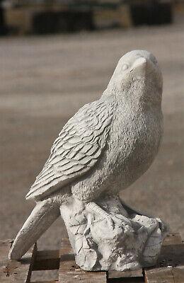 Pájaro Pájaros Hormigón Piedra Figura de Jardín Resistente Heladas PO-1754