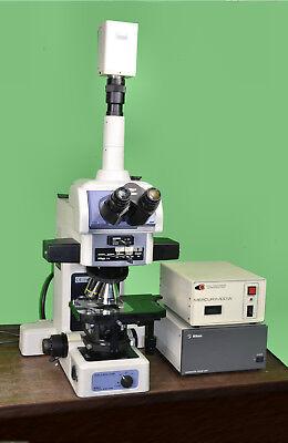Nikon Eclipse E800m Upright Dic Fluorescent Epi Research Microscope