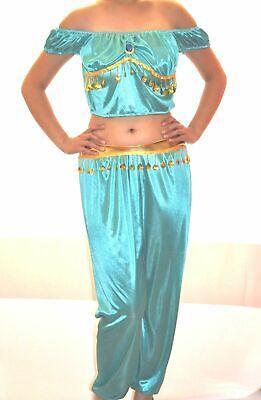 Princess Jasmine Aladdin costume adult