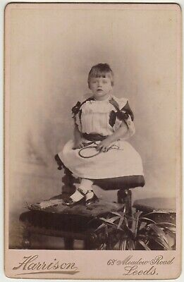 Cabinet Photo by Harrison of Leeds Young Girl in Fine Costume holding Toy c.1890, used for sale  Shipping to South Africa