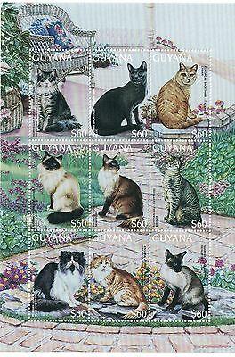 GUYANA - 1996 CATS - SC 3103 SHEET OF 9 MNH