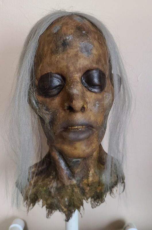 Rotted Corpse - Zombie Head - Severed Halloween Horror Prop - 091121-06
