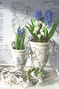 Antique Amphore Übertopf Pokal cremeweiss shabby Vintage Garten 24 cm antik-look