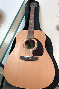 Simon & Patrick Luthier 6 string acoustic guitar with case