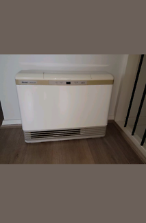 Gas heater with control