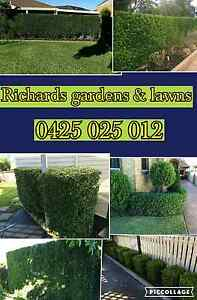 Lawn and garden care Swansea Lake Macquarie Area Preview