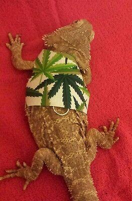 Lil' Bestie Bearded Dragon reptile Harness and Leash POT MARIJUANA WEED