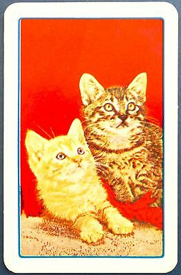 VINTAGE SWAP CARD. GINGER KITTEN & TABBY CAT. c1930s-40s ASTOR SERIES for sale  Shipping to Canada