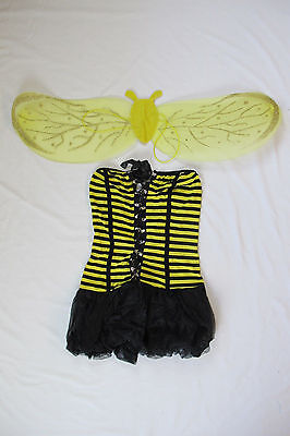 Cute Bumble Bee Halloween Costume (Sexy Cute Bee Honeybee Halloween Costume with Wings Bumblebee Women Adult NEW)
