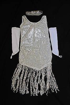 Cute Adult Costumes (Sexy Cute Great Gatsby Halloween Costume Party Dress Sequins Women Adult NEW)