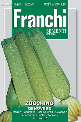 Genovese Seeds (Franchi Seeds of Italy - Courgette - Genovese - Seeds)