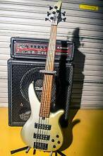 FOR SALE- Complete Pro bass setup Telina Gladstone City Preview