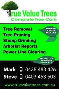 Tree removal Flagstaff Hill Morphett Vale Area Preview