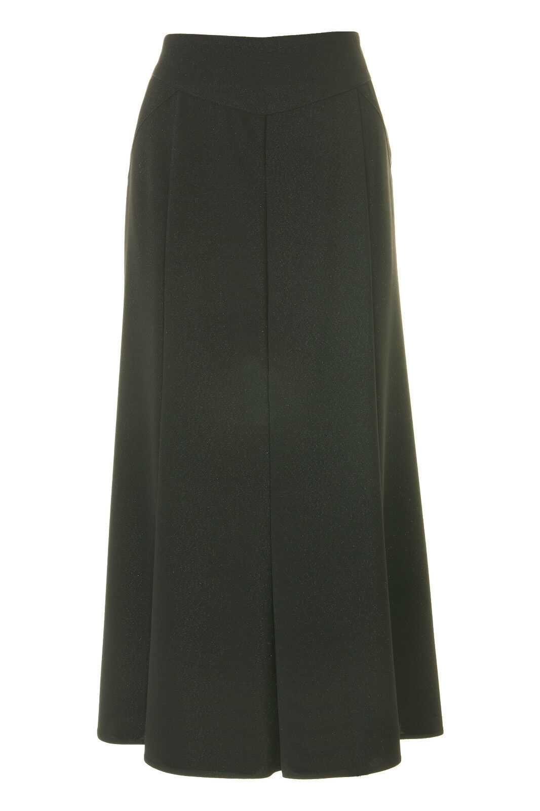 Busy Sparkle Black Long Flared Skirt
