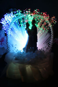 wedding cake toppers light up fiber optic light up wedding cake topper 760 ebay 26521
