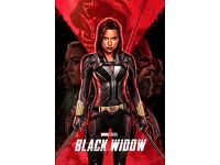 - Scarlett Johansson Black Widow Movie Poster Robert Downey 24x36 Harbour v1