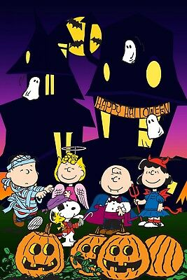 Charlie Brown Halloween Iron On Transfer For T-Shirt & Light Color Fabrics #11