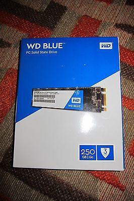 WD Blue M.2 250GB Internal SSD Solid State Drive - SATA 6Gb/s - WDS250G1B0B 2280