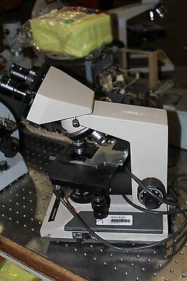 Olympus Bh2  Microscope W 10x20l Eye Pieces And Objectives