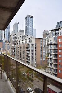 2 Bedroom Very Spacious Griffintown Condo