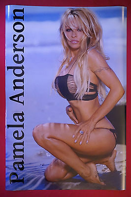 Pamela Anderson Swimsuit Exotic Model Sexy Beach Picture Poster 24X36