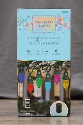 Gemmy Orchestra of Lights Multi-Function Color-Changing Led C9 Lights 24