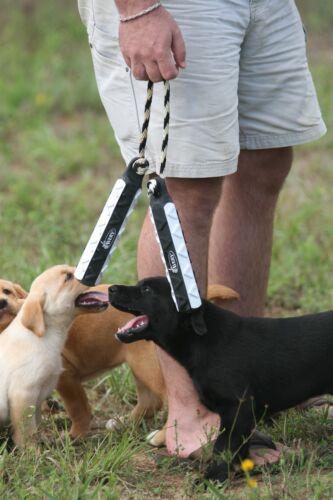 "Avery Greenhead Gear Sporting Dog 2"" FLASHER Black White Hexabumper Hexa Bumper"
