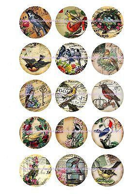 "BIRDS BOTTLE CAP IMAGES 15 1"" CIRCLES  CUPCAKE TOP BOWS *****FREE SHIPPING*****"