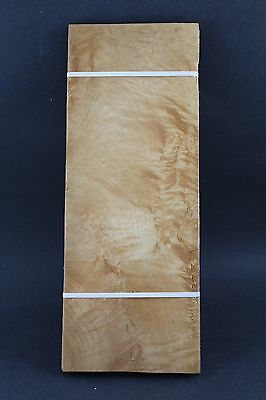 Quilted Maple Molted Raw Wood Veneer 14 34 X 5 12 X 142 One Sheet