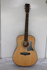 Tanglewood acoustic guitar with soft case