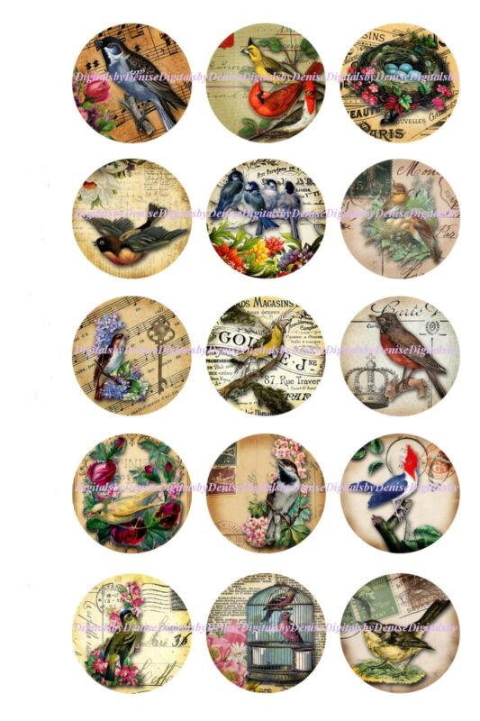 "BIRDS  1 "" CIRCLES  BOTTLE CAP IMAGES. $2.45-$5.50  *****FREE SHIPPING*****"