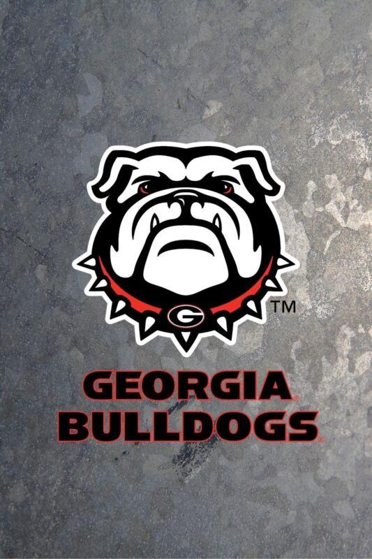 2 UGA Georgia Bulldogs vs MIZZ Missouri Football Tickets Sect 119 LOWER LEVEL