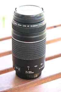 Canon EF 70-300mm f4-5.6 IS III , Ef 18-135 , Ef 18-55 , Ef 50mm Sunnybank Hills Brisbane South West Preview