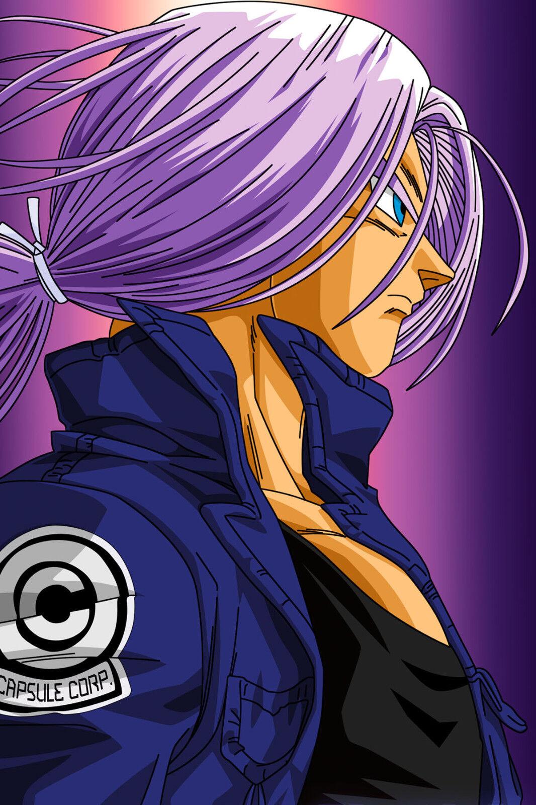 Dragon Ball Z Poster SSJ3 Goku Kicking 18inx12in Free Shipping