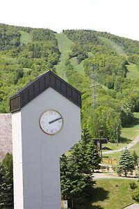 Loft/Studio - à vendre - Beaupré - 16746867 Québec City Québec image 4