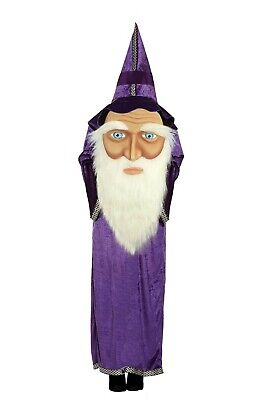 Fancy Dress Adults Wizard Costume with Jumbo face sorcerer robe halloween  ()