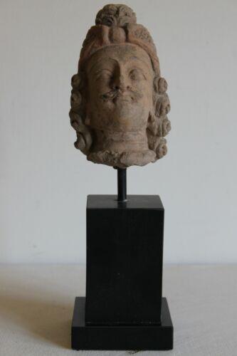 INDO GREEK HEAD of a YOUTHFUL BUDDHA 6/7th CENTURY AD