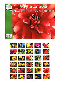 Postkartenbuch Blütenzauber / Blumen,  Romantik,  30 Postkarten – B-Ware
